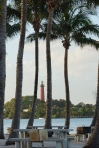 Palms Frame the Lighthouse