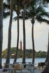 Palms Frame the Lighthouse